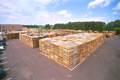 Wooden pallet recycling and manufacturing